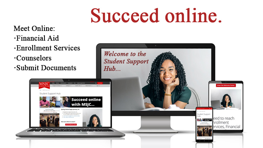 Succeed online.  Meet on the Student Hub.